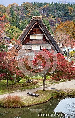 Houses in historic village Shirakawa-go