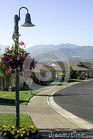 Free Houses - Neighborhood Royalty Free Stock Photography - 535507