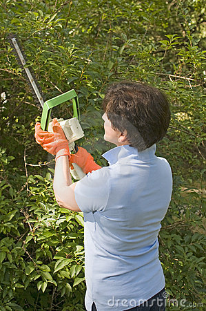 Housewife trimming bushes hedge trimmer