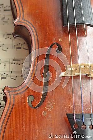 Housing violin.