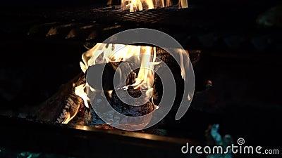 Hout dat wordt verbrand voor roosterworst en biefstuk stock videobeelden