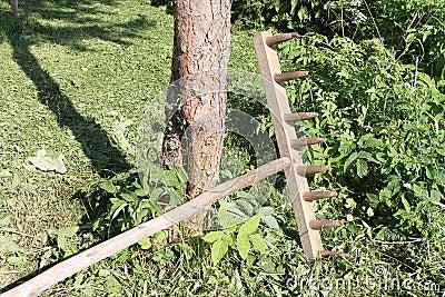 Houten oude hark bij een boom in een tuin stock foto afbeelding 60514012 - Een houten boom maken ...