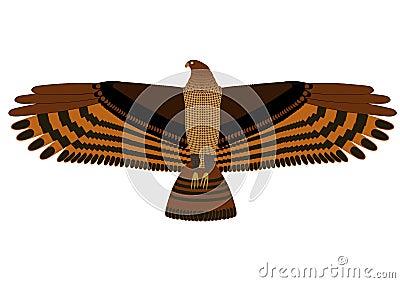 Hovering eagle
