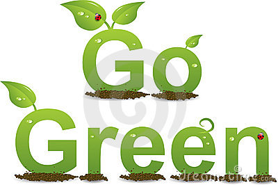 How Green is your Footprint?