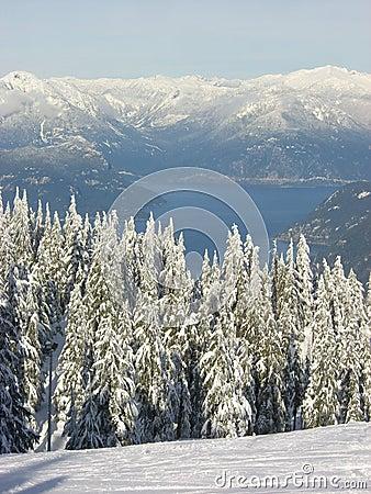 Howe Sound in winter