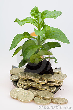 Hows is your money growing
