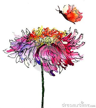 Hrysanthemum flower