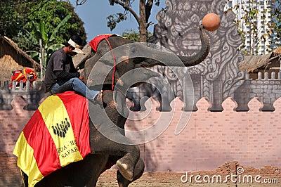 Hua Hin, Thailand: Elephant Show Editorial Photography