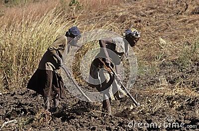 Huambo, Angola Editorial Image