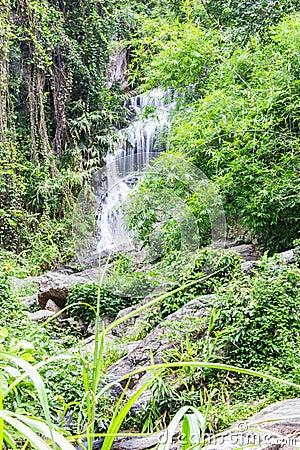 Huay Kaew waterfall in Chiangmai, Thailand