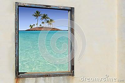 Hublot tropical d îles de paradis de palmiers