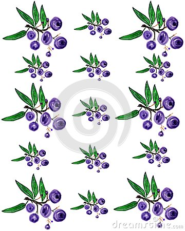 Huckleberry pattern 2