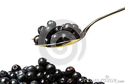 Huckleberry on spoon