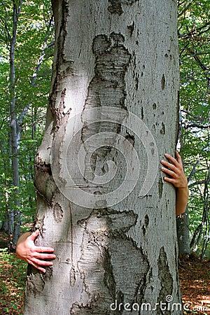 Free Hug Stock Image - 275171