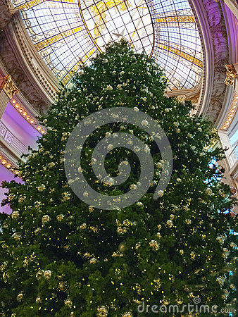 Huge Christmas tree in a mall