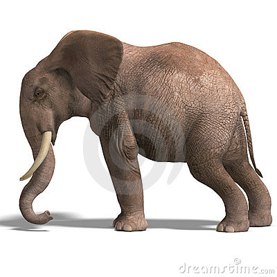 Free Huge Elephant Stock Photos - 9838163
