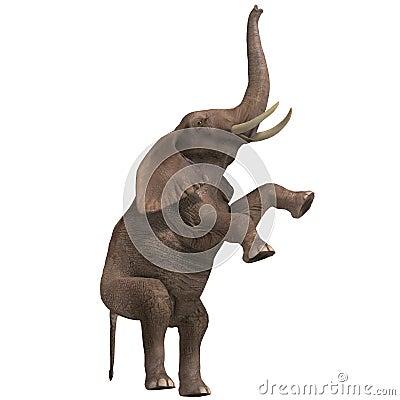 Free Huge Elephant Stock Image - 9955951