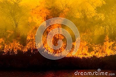 Huge Flame