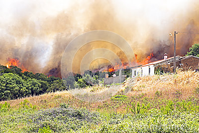 Huge forest fire threatens homes