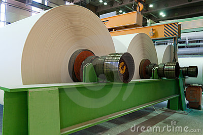 Huge rolls of just manufactured paper
