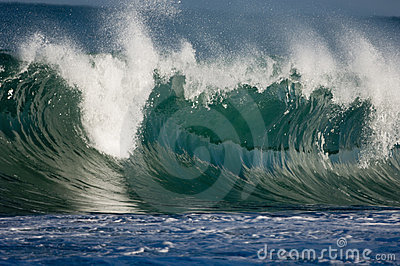 Huge wave in Hawaii