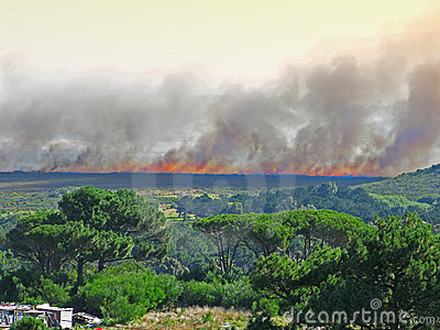 A huge wildfire - South AFrica