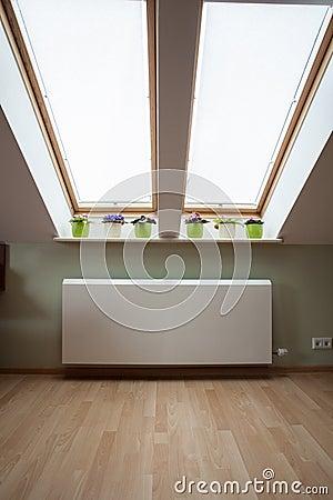 Huge windows on the attic