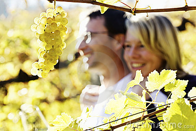 Hugging couple in vineyard.