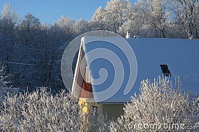 Huis op een ijzige de winterdag