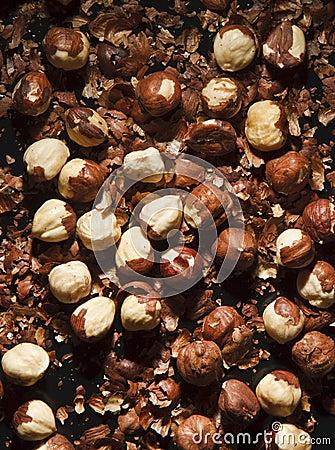 Hulled hazelnuts