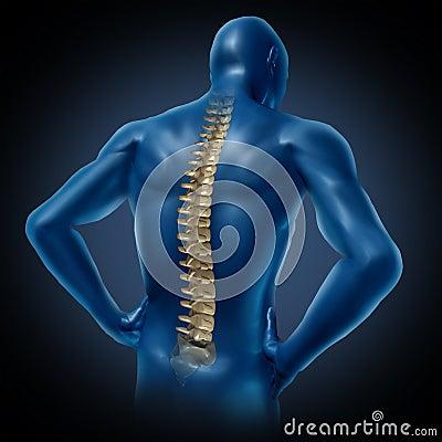 Human back spine posture