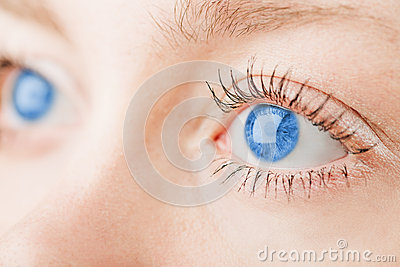 Human blue eyes.