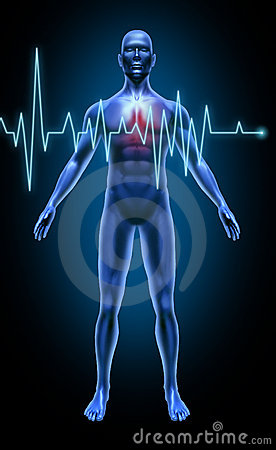 Free Human Body Heart Beat Monitoring Rate Stroke Heart Stock Images - 16584174