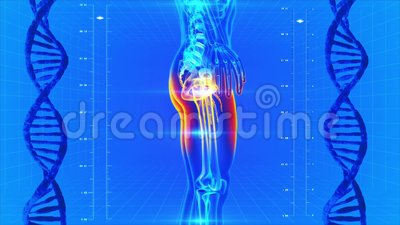 Scanning of the human body. Human body scan on a medical background royalty free illustration