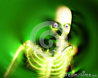 Human Bones 9