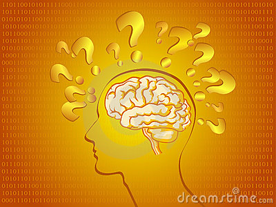 Human brain in bright orange