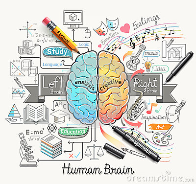 Free Human Brain Diagram Doodles Icons Style. Royalty Free Stock Image - 68413996