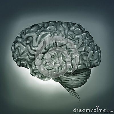 Human Brain - Digital Painting