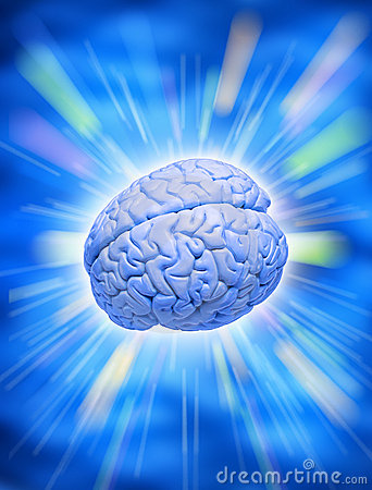 Human Brain Intelligence Creativity