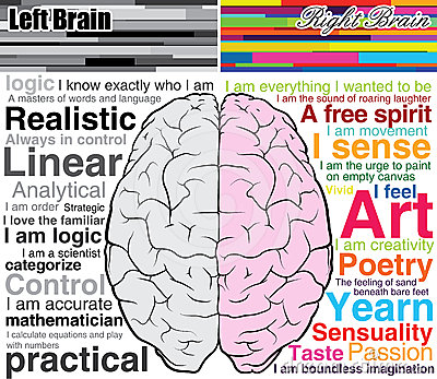 Human Brain Left And Right, What You Are Stock Images - Image ...