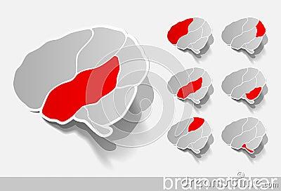 Human brain, realistic design elements