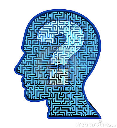 Human brain research