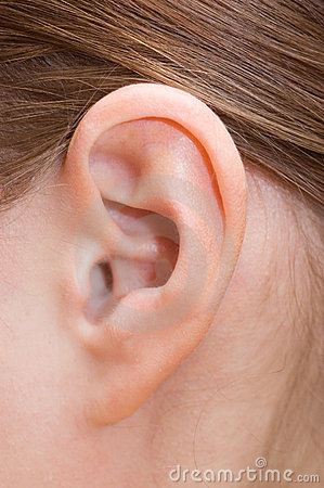 Free Human Ear Stock Image - 17181621