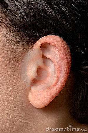 Human ear close up