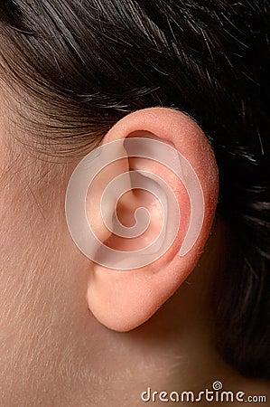 Human ear close up