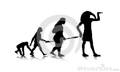 Human Evolution_12