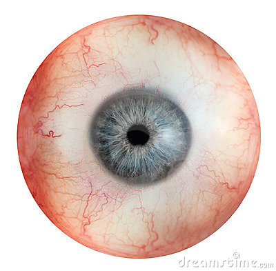 Free Human Eye Stock Photos - 17286123