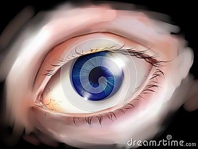 Human eye with blue iris