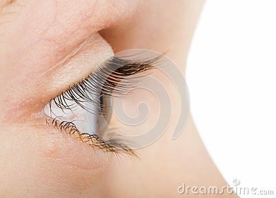 Human eye in profile