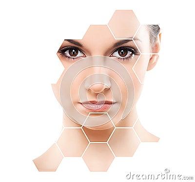 Free Human Face In Honeycomb. Stock Photos - 103670133